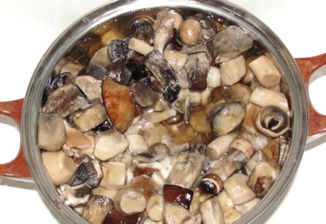 Сколько варить подосиновики: советы грибников