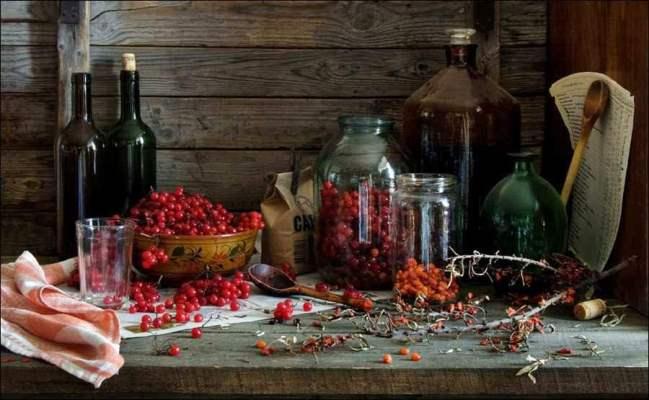 Настойка калины: рецепты ото многих недугов