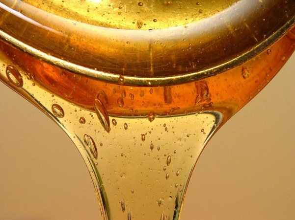 Липовый мед: в  нежели заключаются полезные свойства?
