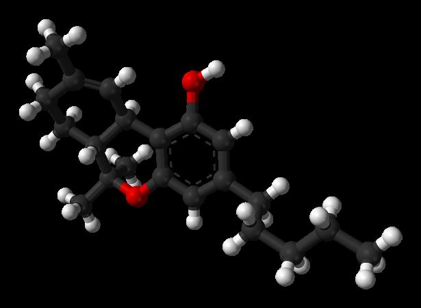 Правила детокса: точно вывести токсины изо организма?