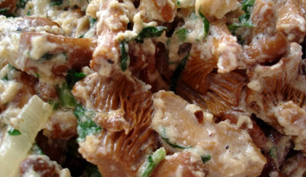 Как жарить сыроежки, сохранив их смачность и пользу?