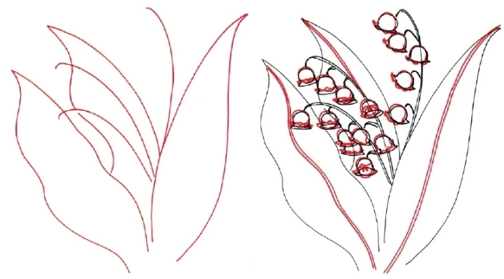 Как нарисовать растение поэтапно: уроки
